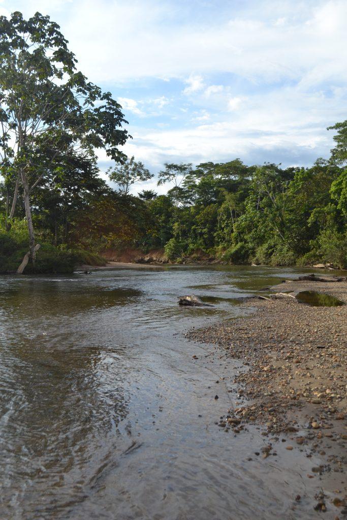 Kolumbien (Bilderstrecke/Bild5): Die indigenen Gemeinschaften von Murindó verteidigen ihr Land und ihr Leben