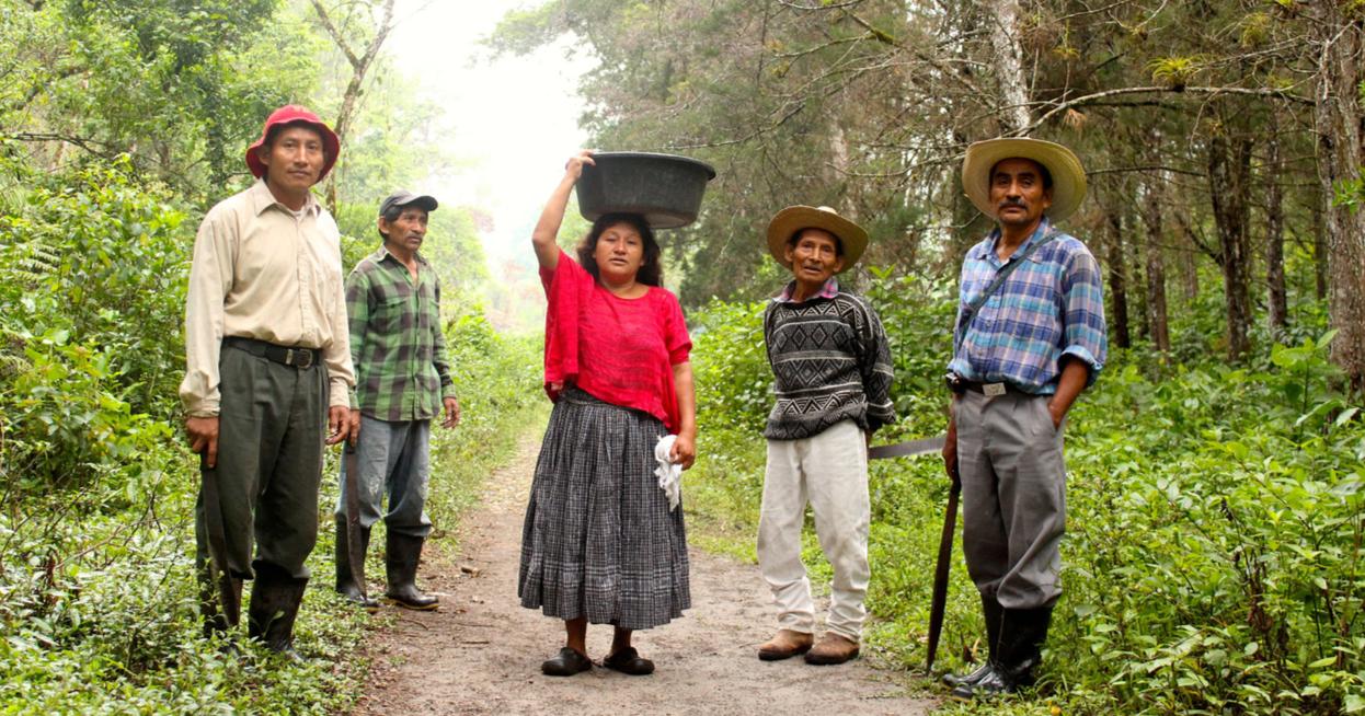 Justino Xollim (rechts) mit Gemeindemitgliedern auf dem Weg zur Feldarbeit. Foto_pbi  Guatemala
