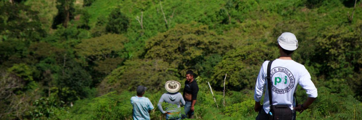 Freiwilligendienst mit der Menschenrechtsorganisation peace brigades international (pbi) in Kolumbien