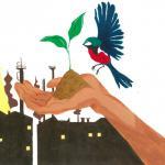 Chico Mendes Tour - Zuschauen ist keine Haltung