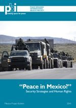 Peace in Mexico? - Security Strategies and Human Rights